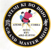USA ATEMI  KI DO DOJO WORLDWIDE HEADGUARTARS