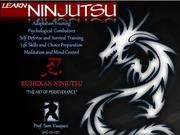 "Bushikan Ninjutsu ""Thinking Theory Dojo"" Special Tactics Group"