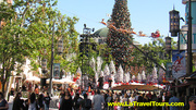 The Grove Holiday Tours