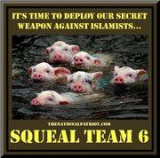 Squeel Team 6