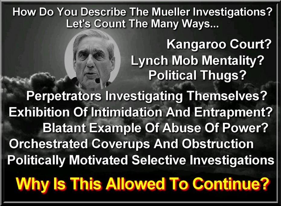 Time To Investigate The Investigators NOW!