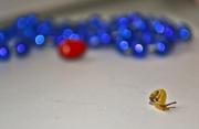 5 mm. kis csiga