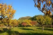 Csobánc, őszi keretben