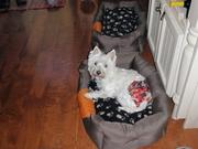 Maggie et sa petite culotte