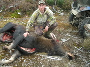 me and the wife's moose