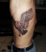 barn owl tattoo black and grey by kevin gordon www.kevingordontattoos.com