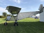 Wing Struts 1