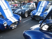 Caffeine and Octane 2009-2010