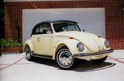 1969 VW 151