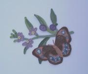 Blue-banded Eggfly Butterfly on Fanflower