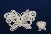Two Double Wing Butterflies