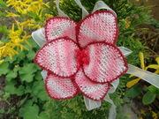 A new Oya flower*