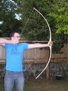 angusta- privet bow