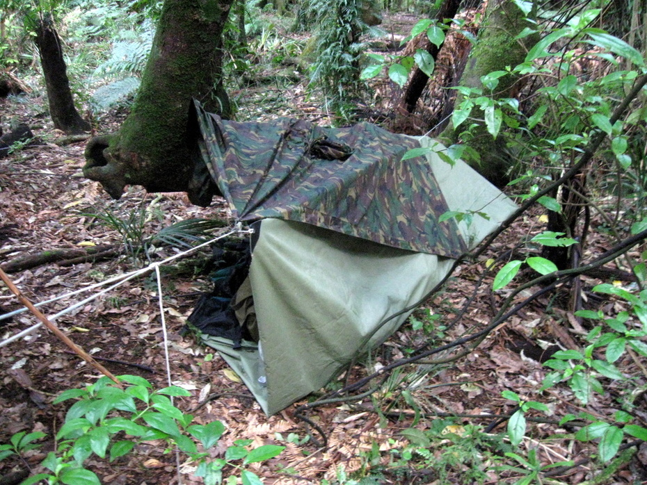 Quick tarp and poncho shelter