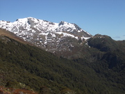 Mount Arthur tramp, New Zealnd