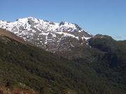 Mount Arthur tramp.