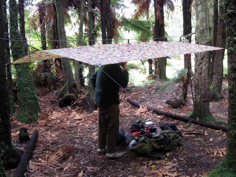 Tarp shelter for a hammock