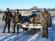 Bird Hunting 11