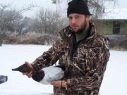 Bird Hunting 9