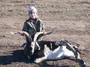Madeline's Crossbow'ed Billy Goat
