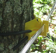 insulator tree mount with polytape closeup
