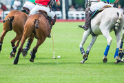 OAK BROOK POLO | HINSDALE MAGAZINE