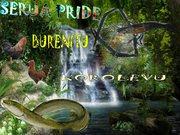 Serua  Pride.
