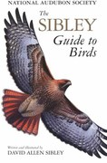 Birding, Birders and all things Birds