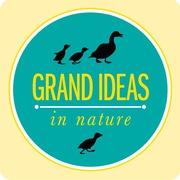 C&NN Grand Ideas in Nature