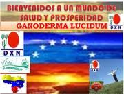 DXN Venezuela