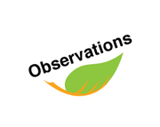 Your Observations