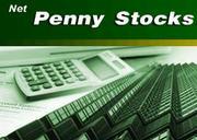 Инвестиционный проект Net Penny Stock