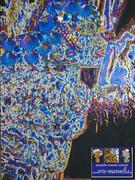 LUXURY ART / ARTE DEL LUSSO