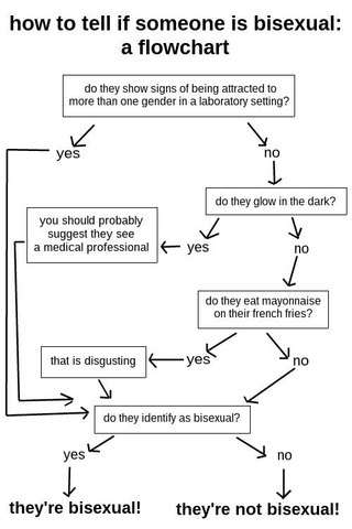 how to tell if someone is bisexual: a flowchart / do they show signs of being attracted to more than one gender in a laboratory setting? [if yes go to (*)] [if no] do they glow in the dark? [if yes] you should probably suggest they see a medical professional [go to (*)] [if no] do they eat mayonnaise on their french fries? [if yes] that is disgusting [in any case] (*) do they identify as bisexual? [if yes] they're bisexual! [if no] they're not bisexual!