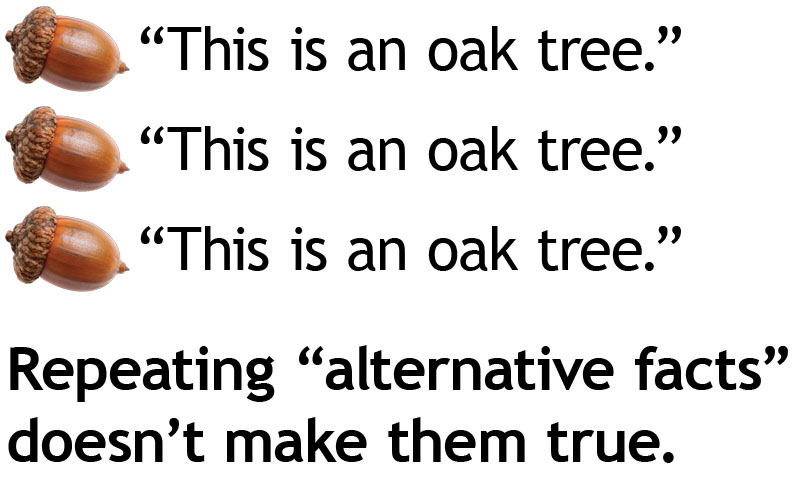 "[picture of acorn] ""This is an oak tree."" [picture of acorn] ""This is an oak tree."" [picture of acorn] ""This is an oak tree."" Repeating ""alternative facts"" doesn't make them true."
