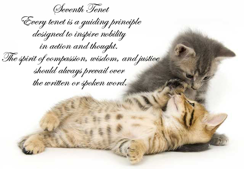 Every tenet is a guiding principle designed to inspire nobility in action and thought. The spirit of compassion, wisdom, and justice should always prevail over the written or spoken word.