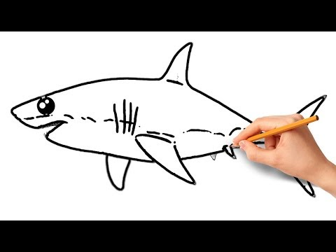 How To Draw Shark Easy Step by Step | Coloring Pages For Kids