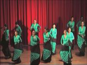 Actuación en Logrosán 1 Julio 2009.