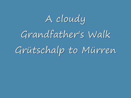 Grandfather's Walk Concert