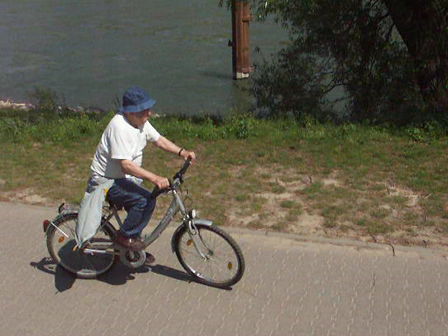 Hal biking on Rhine