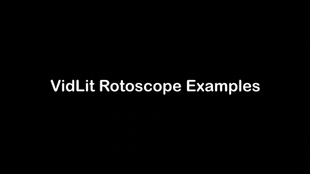 VidLit Productions Rotoscope Examples
