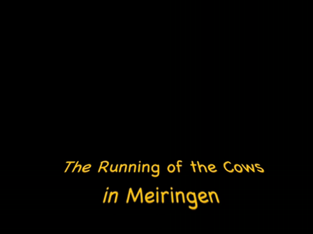 Running of the Cows in Meiringen