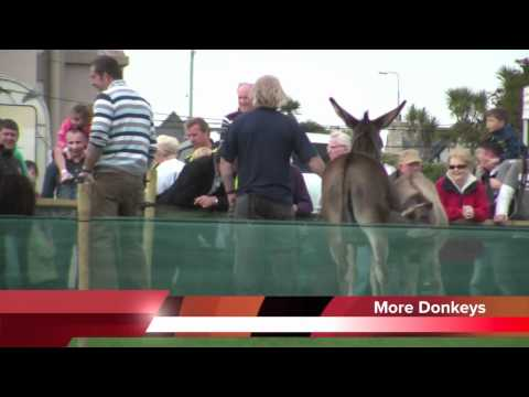 Donkey Derby Mullaghmore August 2011 (Lots of Asses!)