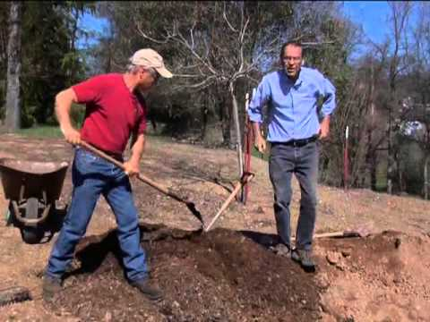Mountain Media Ministries - Planting by the Blueprint