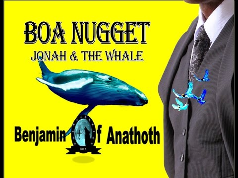 BOA Nuggets  Jonah & The  Whale