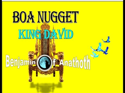 BOA Nuggets  King David