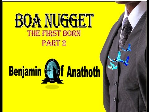 BOA Nuggets  The First Born Part 2