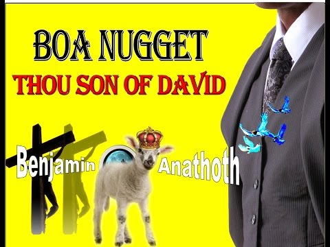 BOA Nuggets Thou Son of David