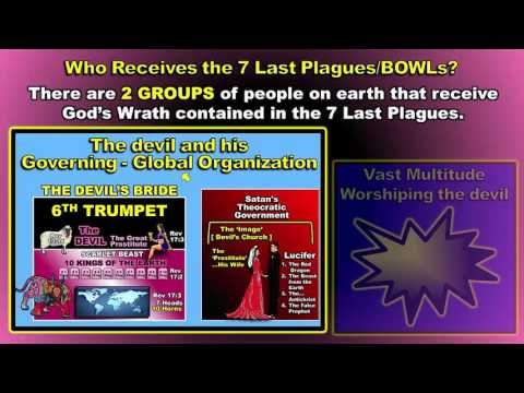 The 7 Last Plagues - Then Armageddon