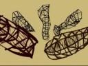 Mind Structures; Falocentrism
